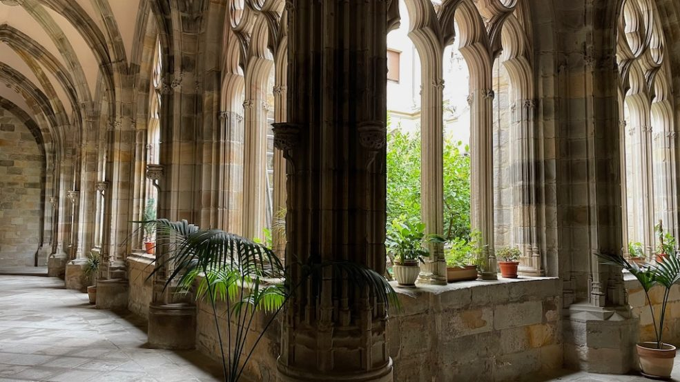 Cathedral Cloister. Photo is taken from one corner. Trees in background